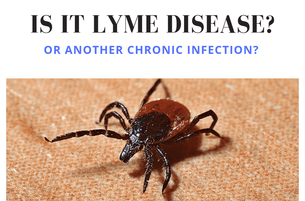 Lyme Disease and Other Chronic Infections