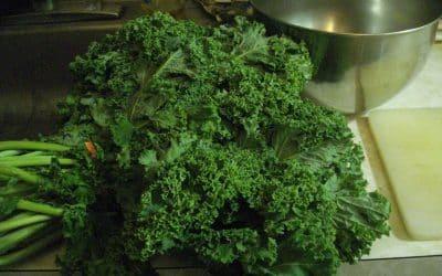 Delicious Kale Shake